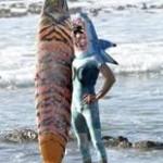 Hurley shark 3